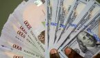 Experts forecast good prospect for the Naira