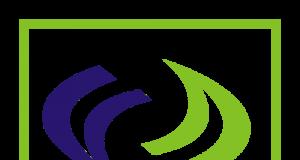 Fidson logo