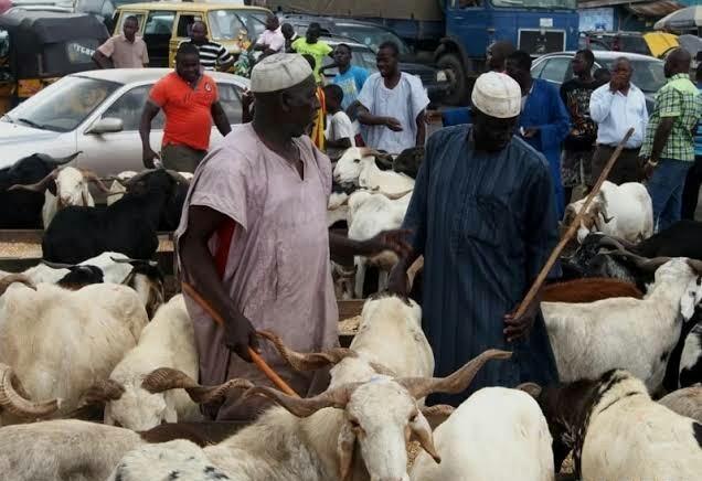 Ram traders