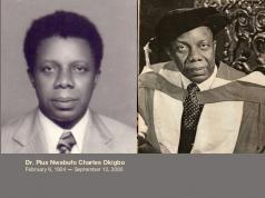 Pius Nwabufo Okigbo